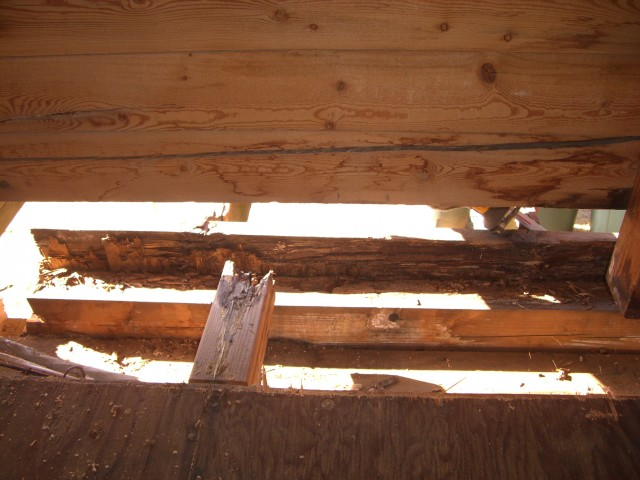 Log restoration project 24