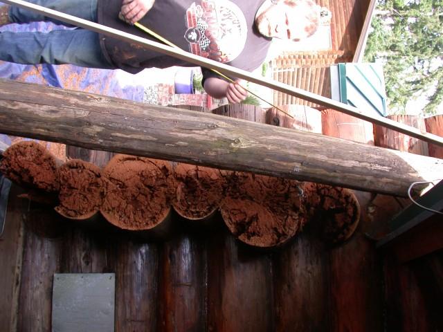 Log restoration project 22