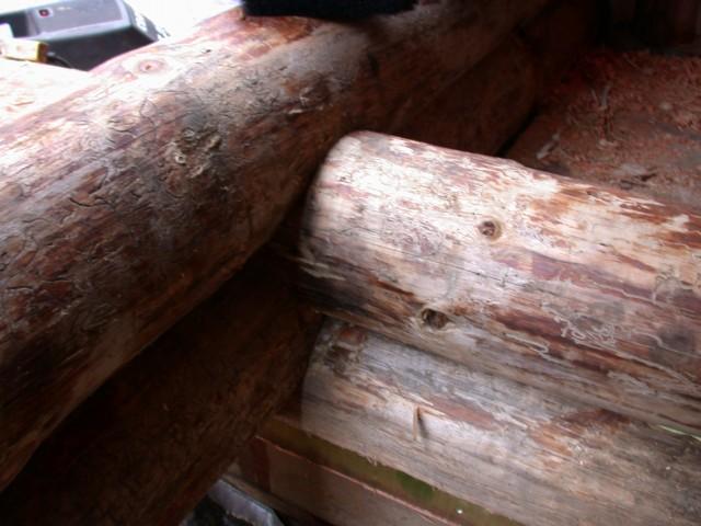 Log restoration project 15