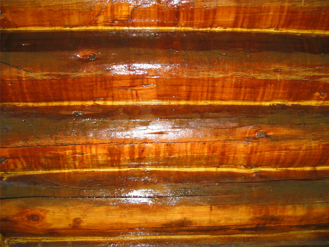 Log Treatments for moisture and pests